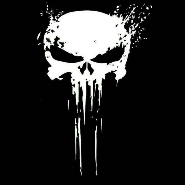 PUNISHER For Auto Car/Bumper/Window Vinyl Decal Sticker Decals Decor CT052