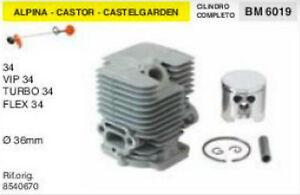 GGP BM011614 CASTOR CASTELGARDEN PISTONE COMPLETO ALPINA