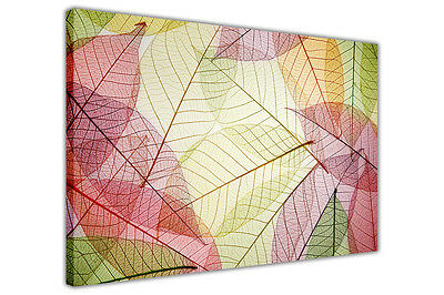 FRAMED CANVAS PRINTS ABSTRACT LEAF PICTURES LANDSCAPE PHOTO AUTUMN HOME DECO