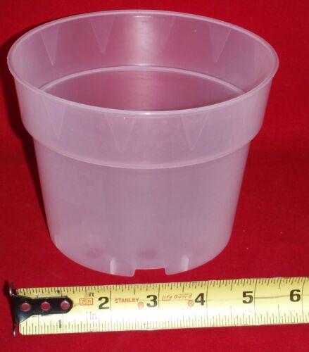 5 6SHORTCLUV premium 6 inch short clear plastic orchid pot large