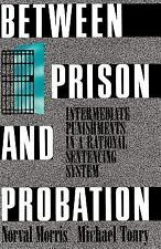 Between Prison and Probation: Intermediate Punishments in a Rational Sentencing