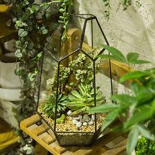 Irregular Glass Geometric Terrarium Box Tabletop Succulent Plant Planter