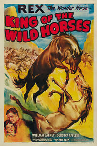 King-of-the-Wild-Horses-1933-Rex-the-horse-Cult-Western-movie-poster-print