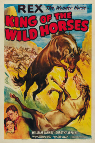 Rex the horse Cult Western movie poster 24x36 1933 King of the Wild Horses