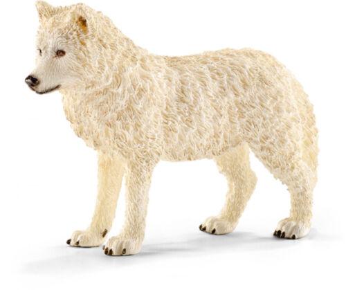 14742 Schleich Polarwolf Arktischer  Wolf  Wildlife Wildtiere 9-10-8