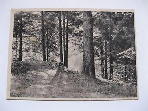Postkarte-Ansichtskarte-Nr-588-Verlag-Erich-Gutjahr-Berlin