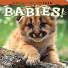 Rocky Mountain Babies! by Farcountry Press (Board book, 2009)