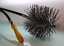"""thumbnail 2 - CFC019 150mm/6"""" dia Grey/White Nylon/Polypropylene Flue Brush Head w screw threa"""