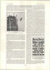1902 Mr Joseph Sykes Wool Cycle Diving Brighton Pier