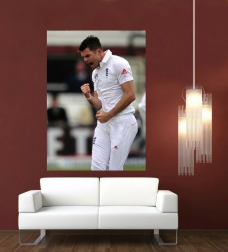 Jimmy Anderson England Cricket Giant 1 Piece  Wall Art Poster SP213