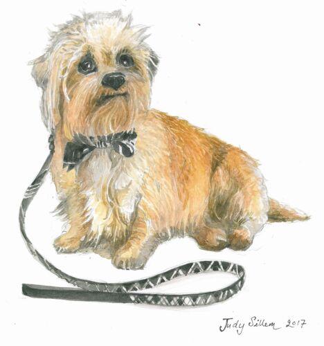Dandie Dinmont Terrier Biglietti D/'AUGURI da un/'originale opera d/'arte.