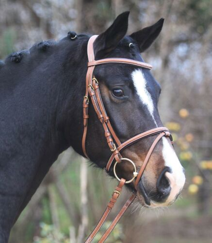 Snaffle,Bridle,Horse Bridle,Snaffle Santander nougatmessing, Very Noble NEW