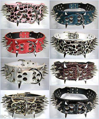 Cooles Hunde Nietenhalsband - Spikeshalsband - Leder Halsband mit Nieten Spikes