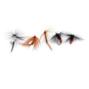 10pcs-Free-Boxed-Set-Assorted-Trout-Flies-Fishing-Fly-Dry-Wet-Hook-S