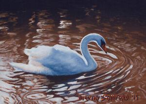 Set-of-2-Mini-Original-Acrylic-Swan-Paintings-5x7-Wildlife-by-Timothy-Stanford