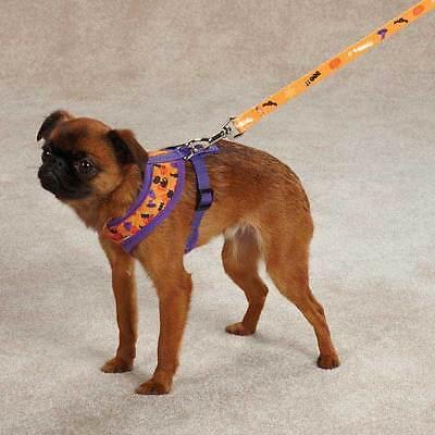 Spooky Dog Soft Harness & Leash | eBay