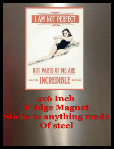 I am not perfect Pinup Girl 4X6 Fridge Magnet ToolBox Shop Man Cave Decor SIGN