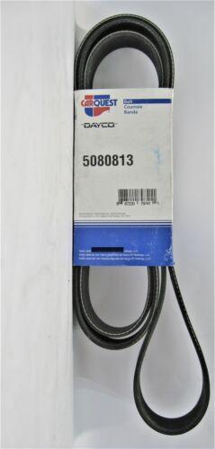 Dayco 5080813 Poly Rib Serpentine Belt