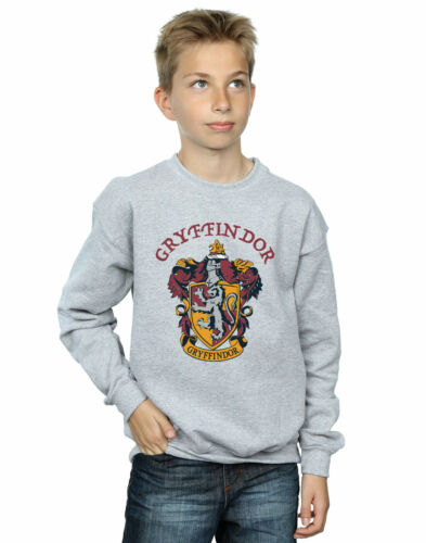 Harry Potter Jungen Gryffindor Crest Sweatshirt