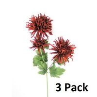 Burgundy 25 Chrysanthemum Spider Mum Long Stem With 3 Heads - 3 Pack