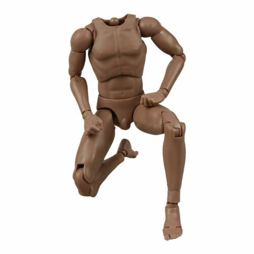 """VH 12inch 12/"""" Europe Skin Male Action Figure Body Fit For 1//6 Head Sculpt Toys"""