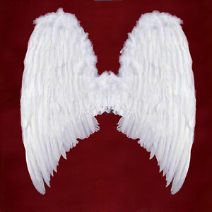 adult-feather-angel-wings