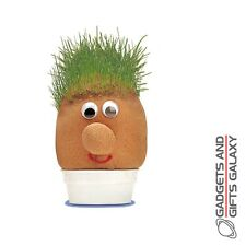 Mr Grasshead Inc Grass Seed Trim & Style It Discovery Summer Garden Toy Gift