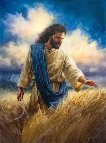 Nathan Greene REAPING THE HARVEST Jesus Great Commission 16x20 unframed print