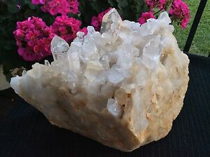 Clear-QUARTZ-HUGE-Crystal-Point-Cluster-Arkansas-USA
