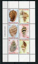 St Maarten 2015 MNH Seashells 6v M/S Shells Marine Schelpen Stamps