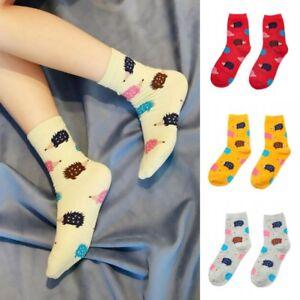 US Lot 5 Assorted Kawaii Cute Cat Ears Kitty Animal Woman/'s Cotton Cartoon Socks