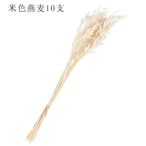 10 Pcs Natural Dried Flowers Wheatear Bouquet Wedding Party DIY Craft Home Decor