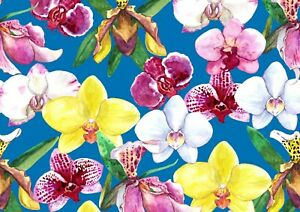 A4-Beautiful-Orchids-Poster-Size-A4-Flowers-Floral-Pretty-Poster-Gift-15982