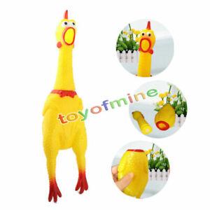 Squeeze-Shrilling-Gomma-di-pollo-animale-domestico-del-morso-del-cane