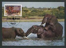UGANDA MK FAUNA ELEFANTEN ELEPHANTS MAXIMUMKARTE CARTE MAXIMUM CARD MC CM m114