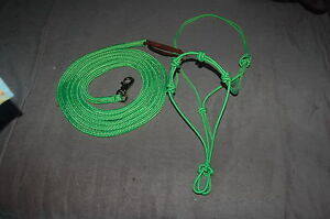 14-039-LIME-GREEN-LEAD-ROPE-WITH-BULL-SNAP-amp-TRAINING-HALTER-FOR-PARELLI-METHOD