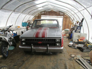 81 C10 long box TN truck