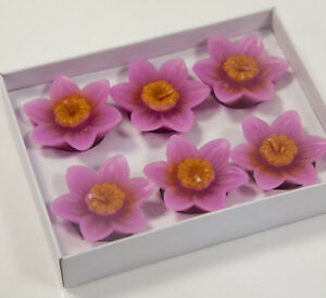 Floating Lotus Flower Candles Pack Of 6 Home Decor Wedding Events Ebay