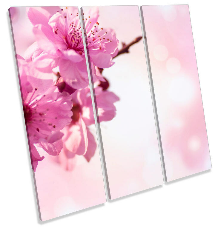 Cherry Blossom Floral Flower TREBLE CANVAS WALL ART Square Print Picture