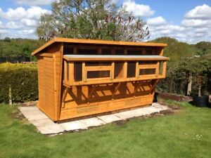 Pigeon loft - 12X6 , 2 SECTION with Box Aviary