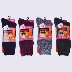 a57a2a7b3 Polar Extreme Insulated Thermal Women's Socks Marl Brushed 4 Colors ...