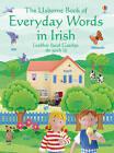 Everyday Words in Irish by Usborne Publishing Ltd (Paperback, 2005)