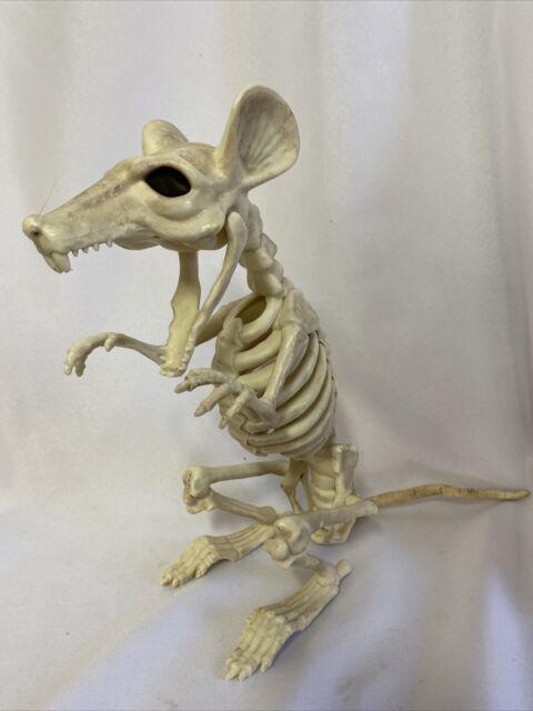 Plastic Animal Skeleton Bones for Horror Halloween decor pet cemetary bulldog