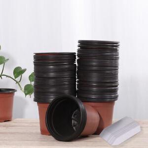 100X Plastic Plant Flower Starting Pots Nursery Seedlings Pot Plant Lightweight.