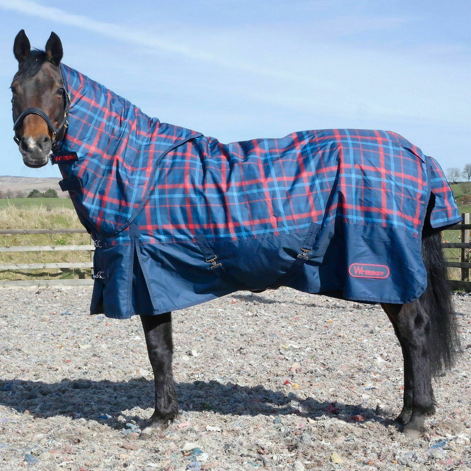 JOHN WHITAKER  FOLLIFOOT TURNOUT 200G RUG SALE Medium Mediumweight