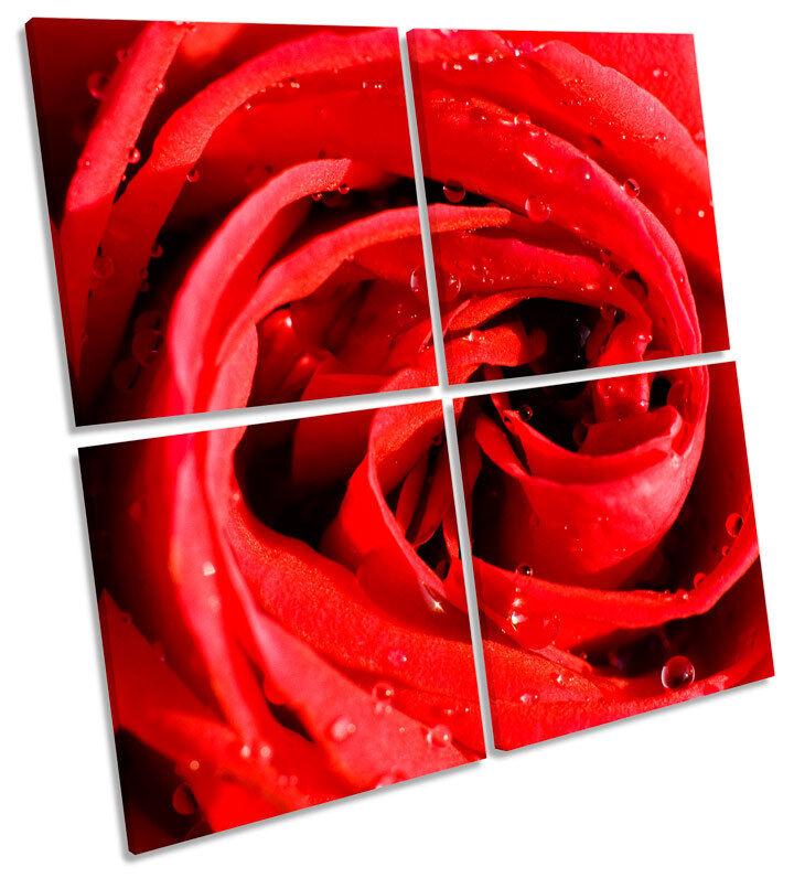 Rojo Flor Rosa Flor Rojo Floral MULTI LONA pared arte Foto Cuadrado 224577