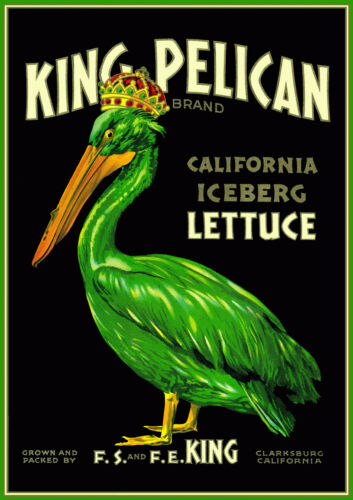 Canvas King Pelican California Lettuce Vintage Produce Poster Art Print POSTER