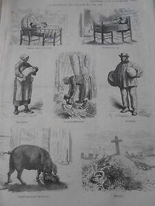 """Gravure 1874 - La Mortalité des Enfants en bas Age dévoré par un porc etc.. - France - Commentaires du vendeur : """"Zoom sur la photo pour mieux voir l'état"""" - France"""