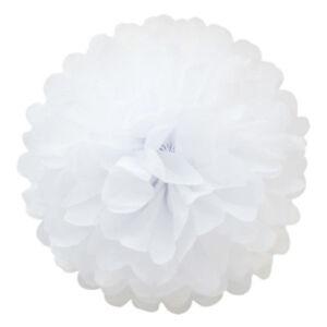 5x-White-Paper-Tissue-Pom-Poms-Balls-for-Wedding-Home-Party-Decoration-Lantern-t