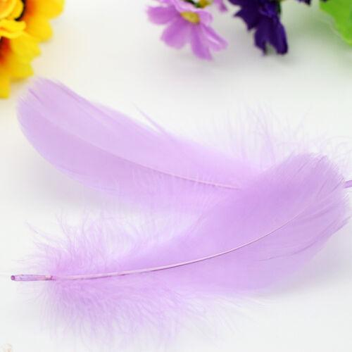 100pcs schöne natürliche Gans-Feder 8-12cm 13 Farben nagelneu